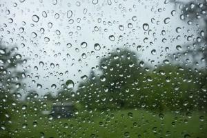 В Самарской области дожди не собираются прекращаться