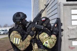 В Самарской области спецподразделения Росгвардии приняли участие в тактико-специальных занятиях