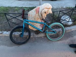 В Самаре мальчик на велосипеде попал под машину