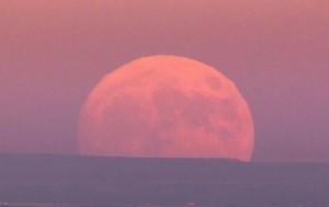 Россияне смогут увидеть суперлуние и лунное затмение в конце мая