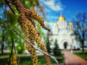 Дмитрий Азаров поздравил жителей Самарской области с Праздником Весны и Труда!