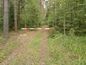 На территории лесного фонда региона будет производиться обработка пестицидами очагов вредителей лесных насаждений.