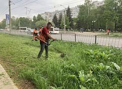 В этом году к первому этапу покоса травы на городских территориях приступили раньше обычных сроков.
