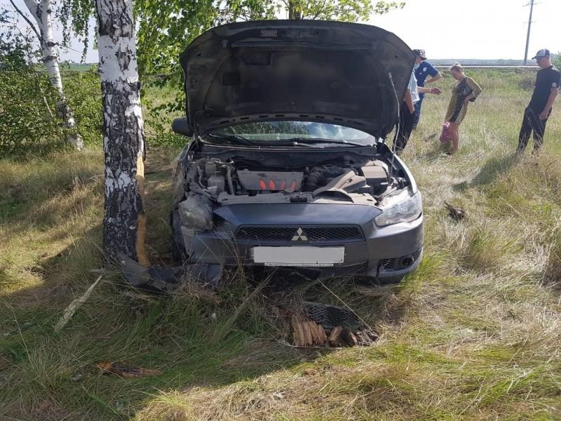 Автомобилистка около Тольятти врезалась в дерево