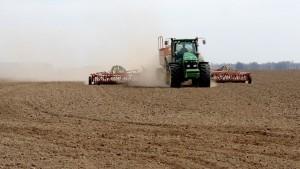 Весенне-полевые работы в Самарской области завершат на этой неделе.
