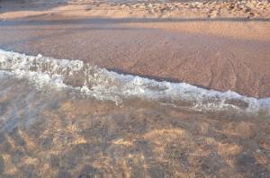 Тело 62-летнего Гвоздя обнаружили в пятницу на берегу моря на курорте Дахаб.