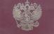В России изменят правила выдачи заграничных паспортов