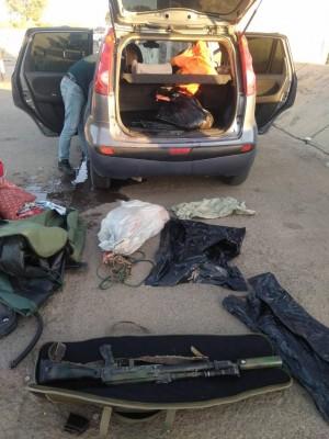 Браконьеры застрелили пятнистого оленя в Самарской области