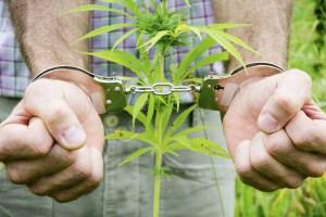 Цель - борьбас незаконным культивированием наркосодержащих растений, на выявление и уничтожение мест их произрастания.