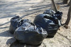 Россиян предложили штрафовать за выброшенный из машины мусор