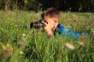 Всего на конкурс было подано 380 работ от юных фотографов из 16 населённых пунктов Самарской области.