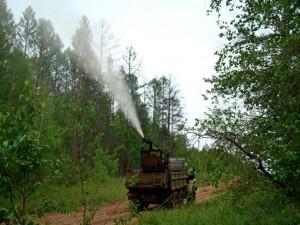 В этом году ввиду жаркого лета, чтобы не дать насекомым-вредителям размножиться на больших территориях, обработки леса от них проводятся в максимально сжатые сроки.