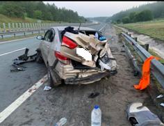 В Самарской области водитель объезжал дикое животное и врезался в ограждение