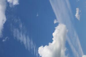 Жителей Самарской области признали самыми большими фанатами облачных хранилищ в Поволжье