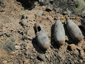 В Самарской области сотрудники Росгвардии уничтожили более 20 авиабомб