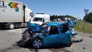После укуса водитель выехал на полосу встречного движения и совершил ДТП.