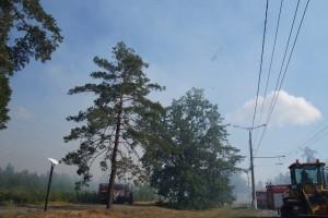 Лесной пожар в Тольятти: ликвидация продолжается