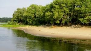 Береговую линию загрязняют не только отдыхающие, но и дачники – не все садовые товарищества заключили договоры с региональным оператором по вывозу ТКО.