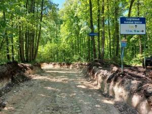 В Самаре продолжается строительство лыжероллерной трассы
