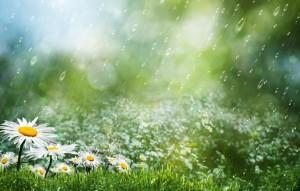 В субботу днем местами пройдет небольшой дождь.