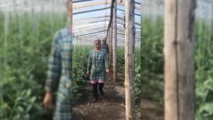 В Самарской области выявили 571 нарушение миграционного законодательства