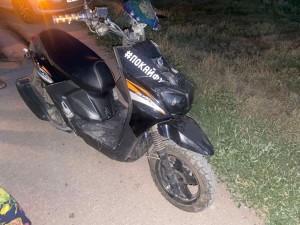 В Кинельском районе женщина на скутере сбила собаку