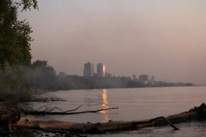 Самарцам объяснили, почему так рано зацвела Волга