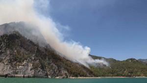 Очаги лесного пожаравспыхнули сразу в нескольких районах на юге страны.