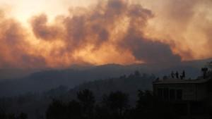 В Турции локализовали 42 из 63 очагов возгорания лесных пожаров