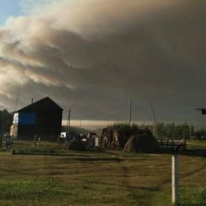 Общая площадь лесных пожаров в России превысила миллион га