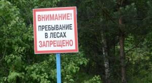 Во всех лесничествах на территории Самарской области.