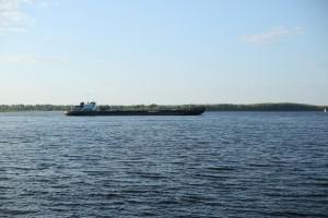В Самарской области Волга прогрелась выше нормы