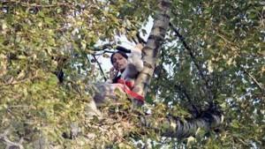 Очевидцы сообщили о том, что в парке женщина залезла на верхушку дерева с арбалетом и что-то выкрикивает, игнорируя призывы полиции и сотрудников МЧС слезть с него.
