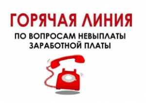 Если вы столкнулись с проблемой неоформления трудовых отношений или нарушением сроков выплаты заработной платы, оставьте сообщение на телефон «горячей линии».