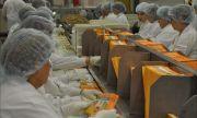 Самарский регион развивает экспорт сладостей