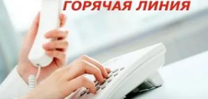 Прием обращений на Общественную «горячую линию» будет осуществляться по нескольким каналам связи.