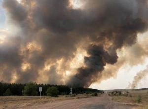 В ликвидации огня помогают авиация и поезда.На месте трудится 101 человек, 42 единицы специальной техники.