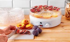 Как выбрать сушилки для овощей и фруктов
