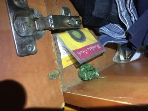 У жителя Приволжского района нашли коноплю в шкафу и на чердаке