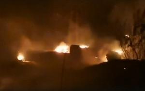 локализован пожар в Тольяттинском лесничестве