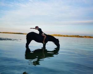 Место слияния рек Волга и Уса, Жигулевское море, конные прогулки и открытие школы верховой езды.
