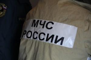 Более 205 тысяч га леса горит в России