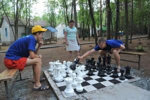 В ней приняли участие 12 организаций отдыха Самарской области.
