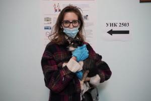 Ветврач, основатель ветеринарного центра Инна Тарасенко решила совместить приятное с полезным – проголосовать, а заодно выгулять своего карликового пинчера.