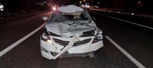 Водитель сбил лося в Волжском районе