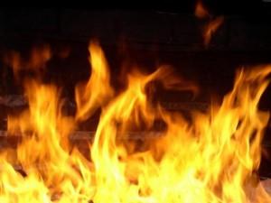 В Борском районе тушили крупный пожар