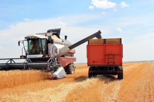 НиколайАбашин отметил, что в текущем году площадь уборки урожая составила 2,177 млн га, что на 50 тыс. га больше прошлого года.