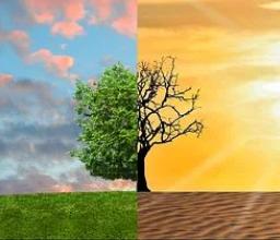 Ученые указали на необходимость более тщательного планирования климатических стратегий на мировом уровне и объединения усилий, чтобы предотвратить катастрофу.