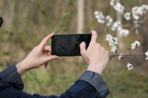 в Самаре и ПФО продажи iPhone 13 оказались в 2,5 раза выше, чем прошлогодней модели