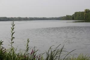 Сбербанк и Чистые водоёмы организовали эко-субботник в Самаре